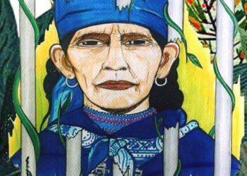 Nación Mapuche. Actualización de la situación judicial de la Machi Francisca Linconao y movilización