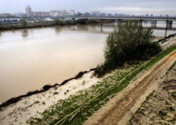 Participa Sevilla celebra, pero ve insuficiente, la suspensión provisional del dragado del río