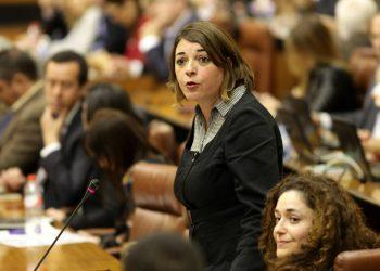 """IU tilda de """"tomadura de pelo"""" el enésimo anuncio de creación de banca pública y acusa a Díaz de """"convertir en mentira todo lo que toca"""""""