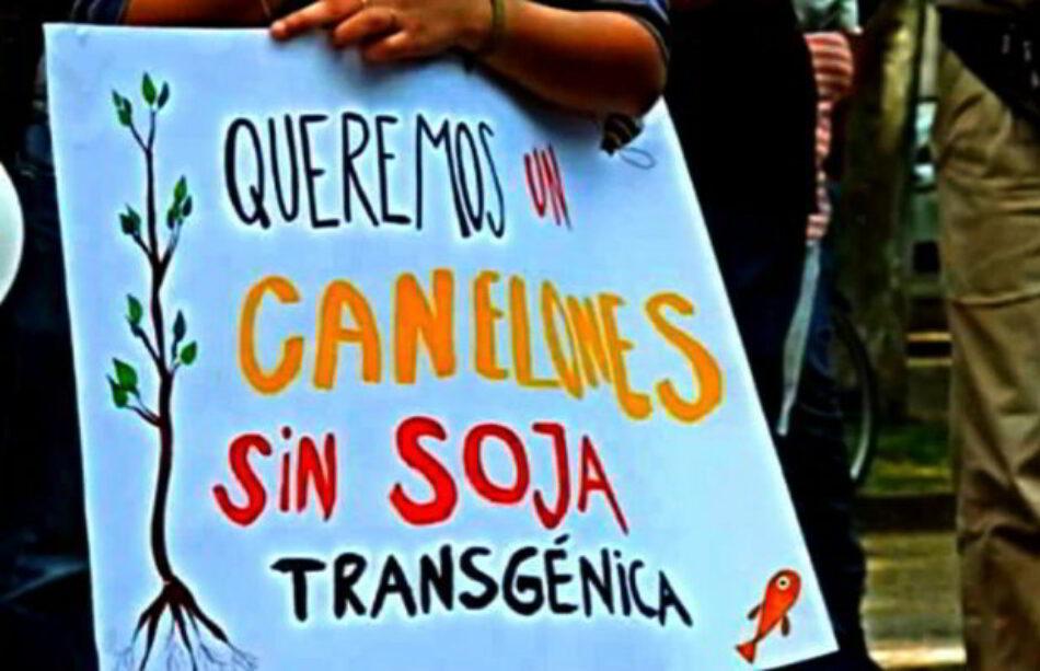 """Uruguay: Los pesticidas para """"salvar"""" la soja contaminan la vida en Canelones"""