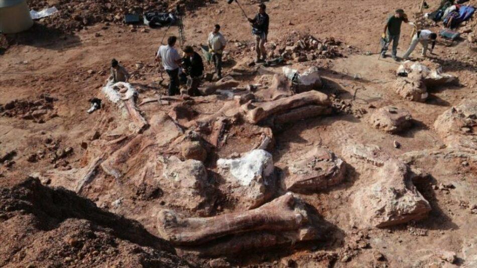 Hallan en Patagonia el secreto de los dinosaurios