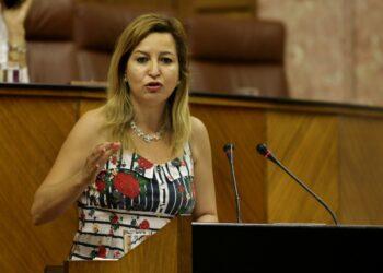 El Parlamento andaluz pide por unanimidad al Gobierno andaluz revertir los recortes en I+D+i