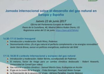 Jornada internacional sobre el desarrollo del gas natural en Europa y España