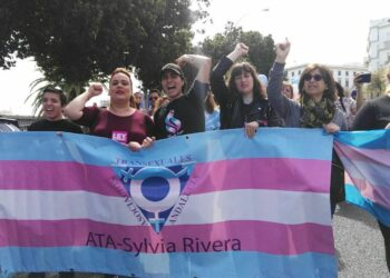 133 entidades piden apoyo unánime a todos los Grupos Parlamentarios del Congreso e instan a Unidos Podemos al registro inminente de la propuesta de ley de la Plataforma Trans