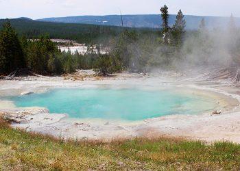 Este raro microbio de Yellowstone puede dar con la clave de la aparición de la vida extraterrestre
