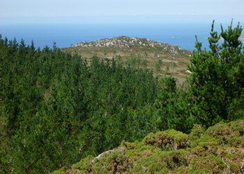 La SGHN critica con dureza el documento ambiental del proyecto eólico de Gas Natural Fenosa en la Costa da Morte