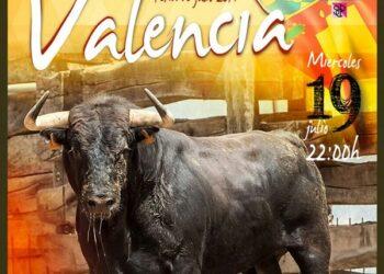 La Tortura No es Culturadenuncia sorteo ilegal de un toro en la Comunidad Valenciana