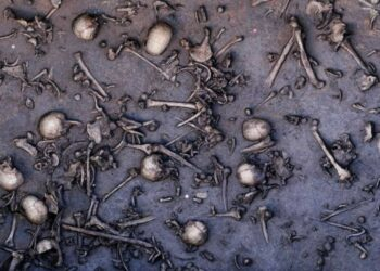 Una colosal batalla de la Edad del Bronce: La batalla del Valle Tollense, hace 3200 años