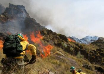 Podemos pide a Susana Díaz revertir los recortes en prevención de incendios para evitar nuevos casos