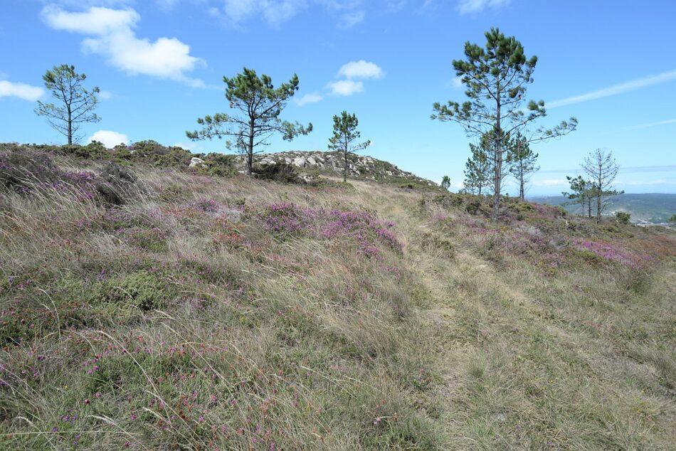 Alertan del posible impacto del proyecto eólico Mouriños sobre el patrimonio arqueológico