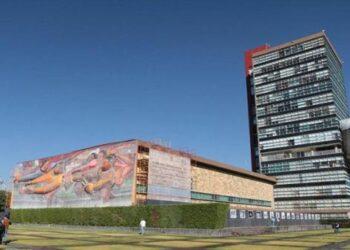 Investigadores de la UNAM desarrollan medicina contra moquillo