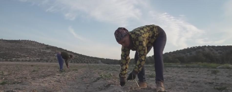 «Cerro Libertad»: cuatro meses sembrando presente para cosechar futuro