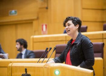 En Comú Podem pide la comparecencia de Dastis en el Senado para explicar el acoso que sufren las ONG en el Mediterráneo