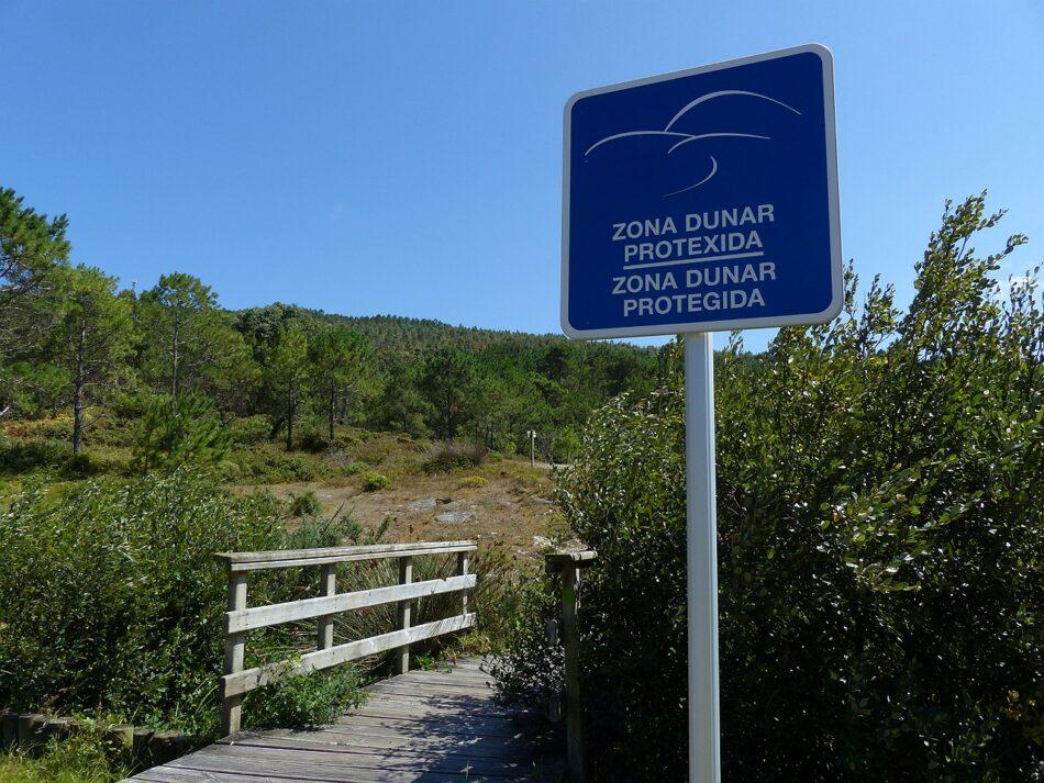 Salvemos Cabana celebra que la Xunta no haya autorizado la acampada del Festival V de Valarés en un pinar público
