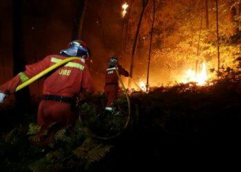 Al menos 31 muertos en los incendios en Portugal