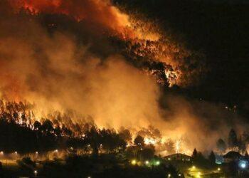 """Vallina: """"La causa principal de los incendios es la pésima gestión del territorio, aunque quieran hacer creer que no hay responsables políticos"""""""