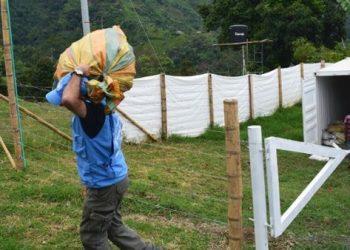 Asesinan dos líderes indígenas en Nariño, Colombia