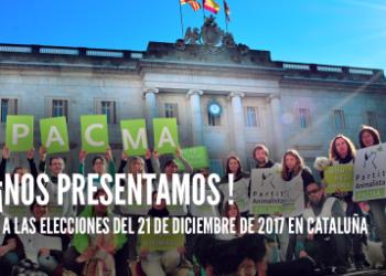 Boicot institucional a PACMA ante el 21D