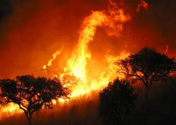 Lluvia después de los incendios: medidas urgentes para evitar la contaminación del agua