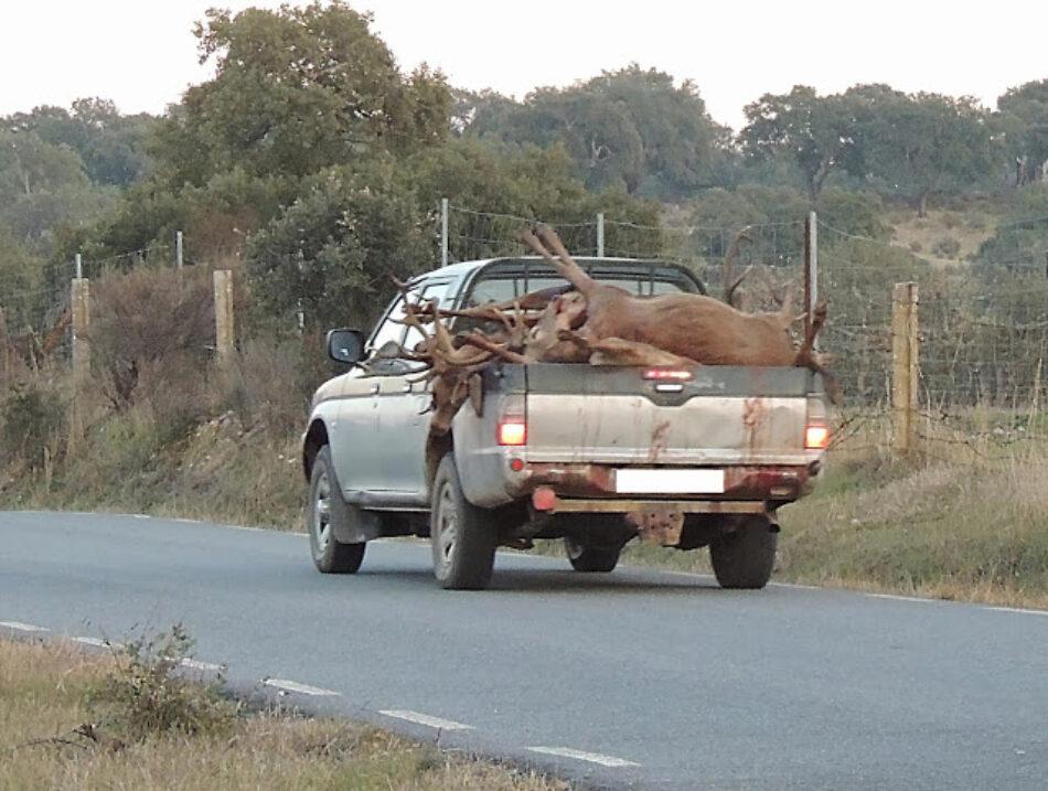 Ecologistas Extremadura lamentan que se celebre hoy una montería dentro del Parque Nacional de Monfragüe