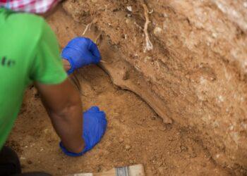 Abierto el plazo para solicitar las ayudas económicas destinadas a las Entidades Locales para exhumar fosas de la Guerra Civil y la dictadura