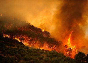 2017 se despide como el peor año del decenio en grandes incendios forestales en España