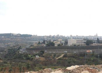 """Pablo Bustinduy: """"La violación de los derechos humanos en Palestina exige que España tome medidas urgentes"""""""