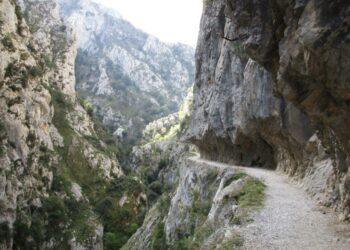 Un delito ambiental que queda sin castigo en el Parque de Picos de Europa