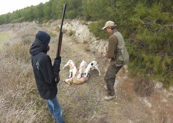 Las fundaciones Libera y Franz Weber denuncian que la Xunta del PP destinó más de 13.000 euros a la caza del zorro en Galicia en los dos últimos años