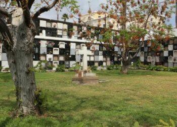 Las familias de las personas enterradas en la fosa común de Las Palmas se consideran de nuevo engañadas y estafadas por Cabildo-Ayuntamineto de Las Palmas GC