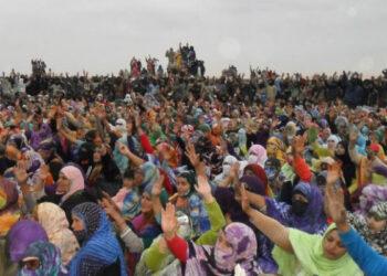 Sahara Occidental. UE convoca al Frente Polisario para negociar sobre el tratado de pesca y agricultura