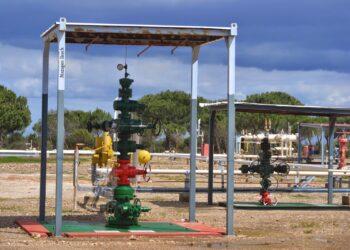 Salvemos Doñana lamenta la falta de compromiso con Doñana por parte del Gobierno y que aún no haya cancelado cautelarmente el proyecto Marismas de almacenamiento de gas
