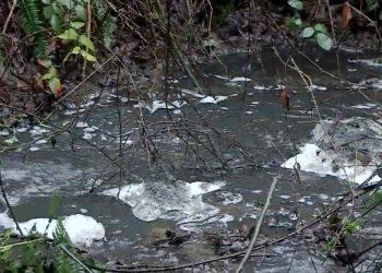 El desbordamiento de una de las balsas de la antigua mina de Touro agrava el desastre ambiental del río Brandelos