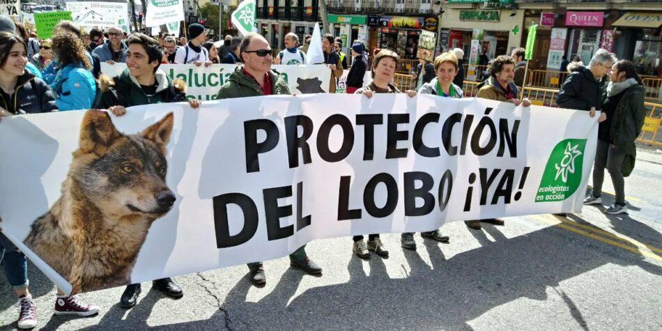 Miles de personas llegadas de todos los puntos del estado se manifiestan en Madrid en defensa del lobo ibérico
