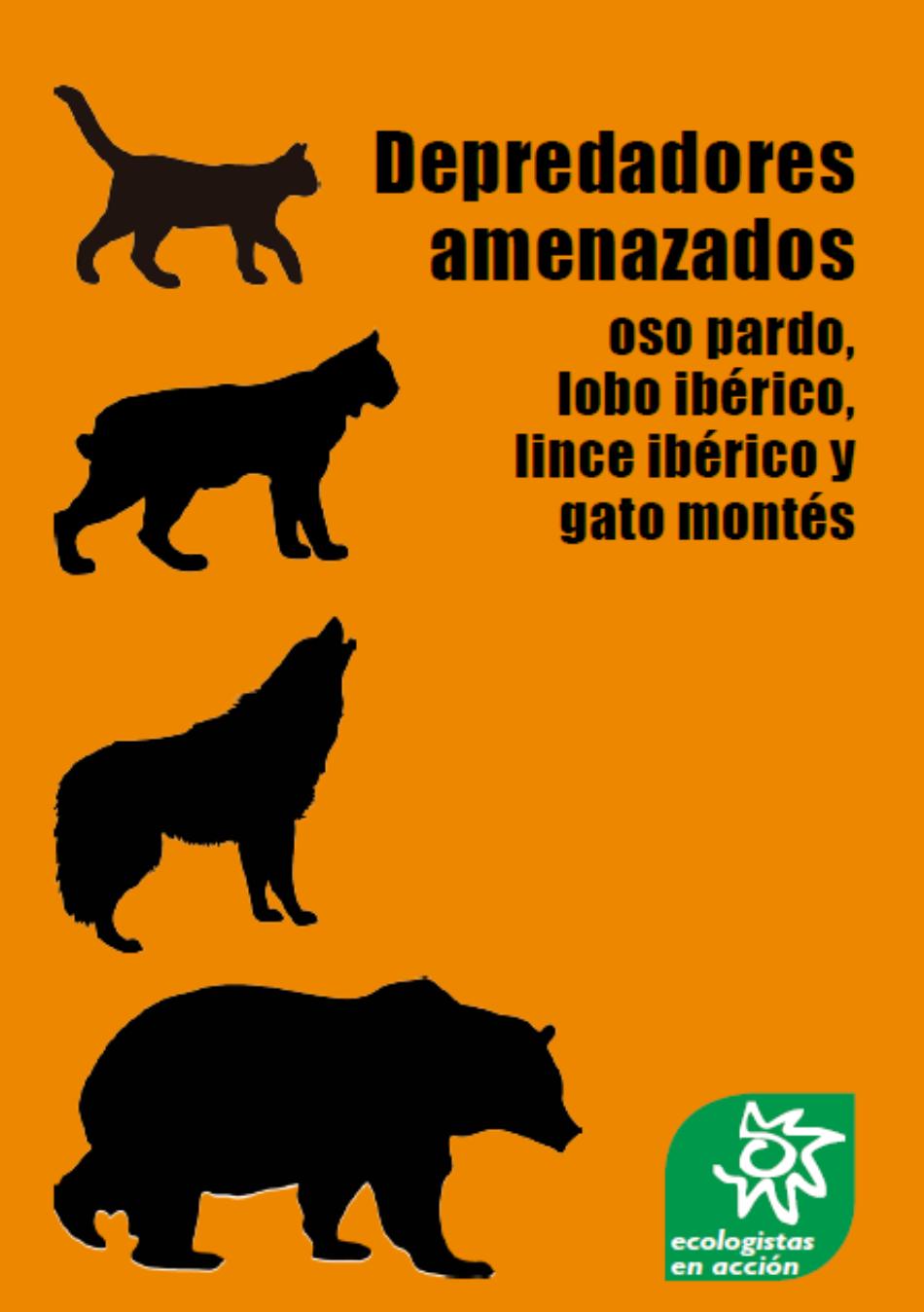 Ecologistas en Acción reclama mejoras en la conservación del oso pardo, el lince ibérico, el lobo ibérico y el gato montés