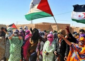 Francia apoya intervención militar en territorio del Sahara Occidental