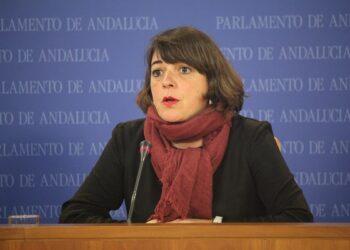 IU saca adelante una PNL para que la Junta de Andalucía no ponga trabas a la vecindad administrativa para acceder a la Renta Mínima