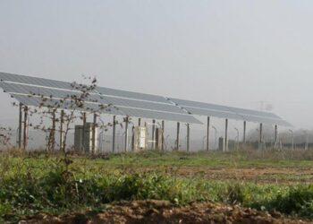 """EQUO pide que """"el cambio"""" empiece por priorizar políticas verdes"""