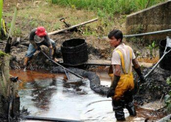 Selva del Amazonas: Causas y consecuencias de la destrucción del pulmón del planeta