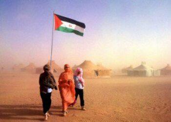 Detenidos en Francia 41 saharauis
