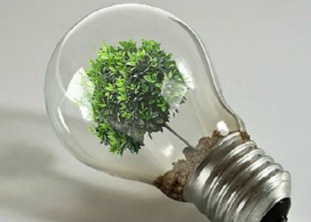 Las organizaciones ecologistas reiteran la necesidad de colocar al medioambiente en el centro de la acción del nuevo Gobierno