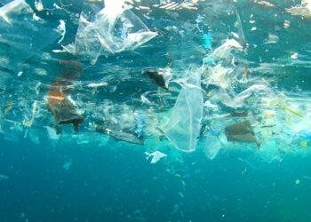 CGT celebra el Día Mundial del Medio Ambiente uniéndose a una campaña contra el vertido de plásticos en nuestras aguas