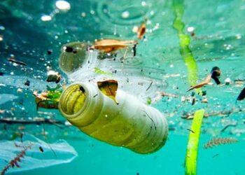 Plásticos a la deriva en las profundidades marinas de toda Europa