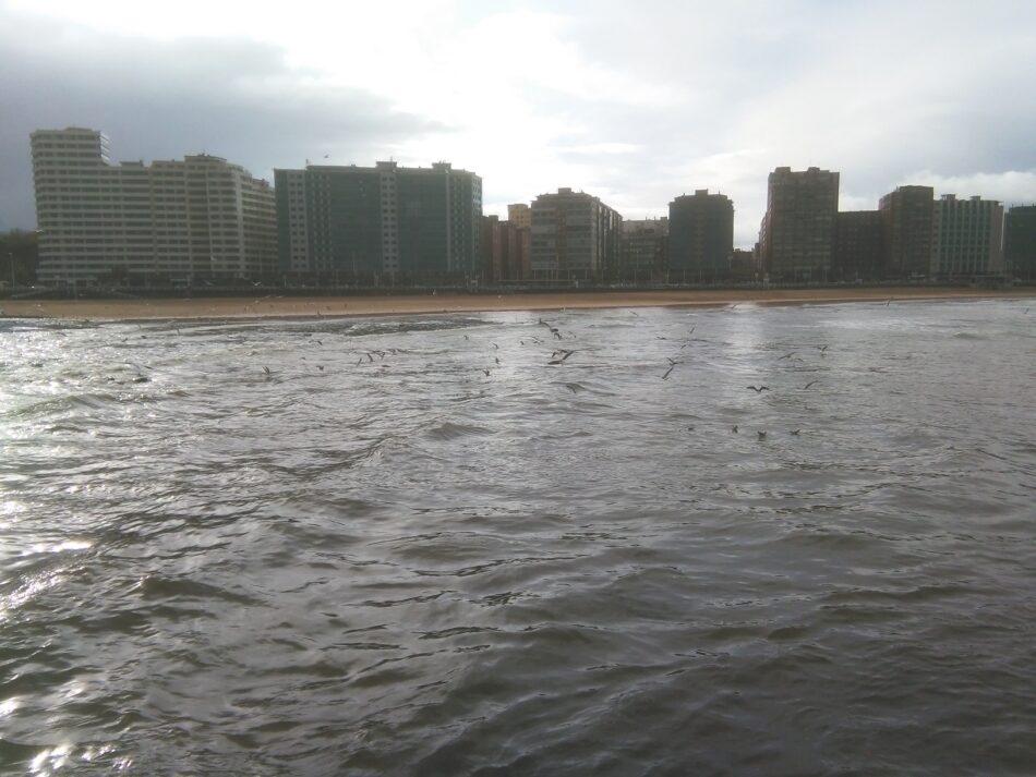 Organizaciones ecologistas denuncian que el Ayuntamiento de Gijón puso en peligro la salud de los usuarios de la playa de San Lorenzo