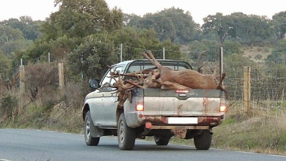 Organizaciones ecologistas de Extremadura exigen el cese de la caza en los espacios protegidos de la región