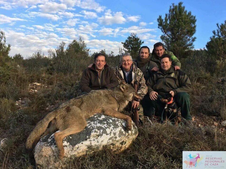 Crónica de muertes anunciadas de lobos en la Sierra de la Culebra, Zamora