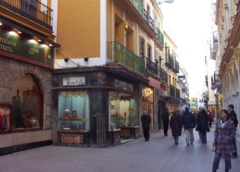 IU Sevilla secunda la huelga de comercio