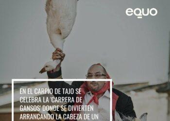 EQUO insta a los municipios a celebrar unas fiestas populares sin maltrato animal