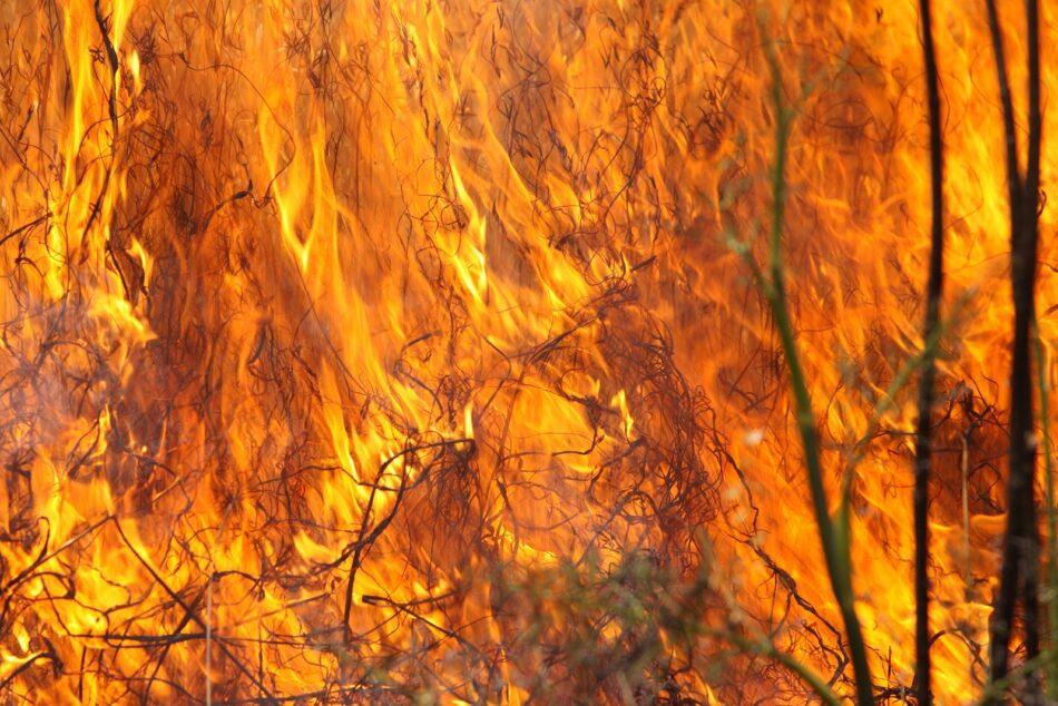 En Marea presenta 38 emendas ao ditame elaborado polo PP da comisión dos lumes