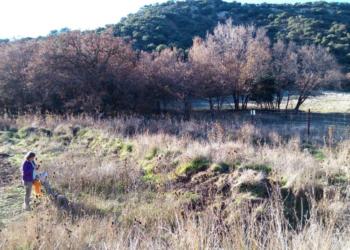 El impacto negativo de la caza en el medio rural crece